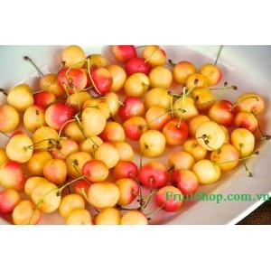 Bán cherry vàng nhập khẩu từ Mỹ