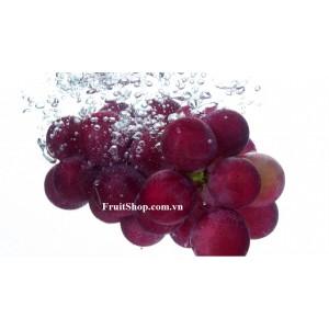 Nho đỏ có hạt Úc