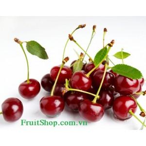 Quả Cherry tươi nhập khẩu từ Canada