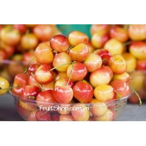 Trái cây tươi nhập khẩu từ Chile