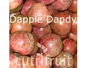 Mận tròn Dapple Dandy Úc